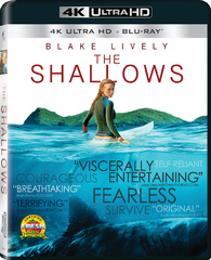 The Shallows 4K (Blu-ray)