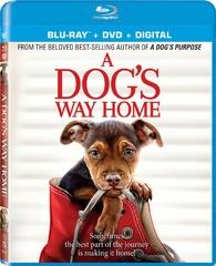 A Dog's Way Home (Blu-ray)