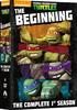Teenage Mutant Ninja Turtles: The Complete First Season (DVD)