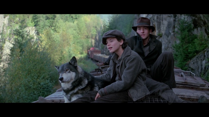 The Journey of Natty Gann Blu-ray Release Date July 17, 2018 ...