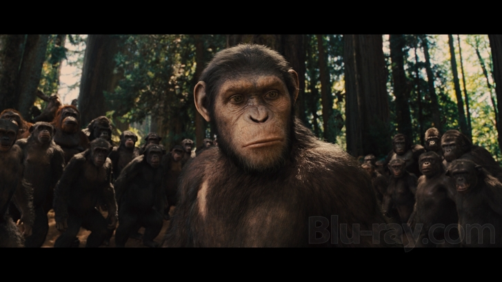 Rise of the Planet of the Apes...